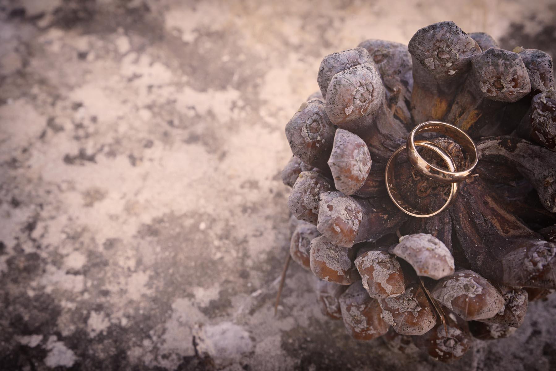 fotografo-matrimonio-fasano-37